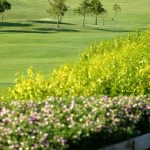 https://golftravelpeople.com/wp-content/uploads/2019/04/Almenara-Golf-Club-151-150x150.jpg