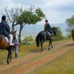 https://golftravelpeople.com/wp-content/uploads/2019/04/Aphrodite-Hills-Resort-Cyprus-36-150x150.jpg