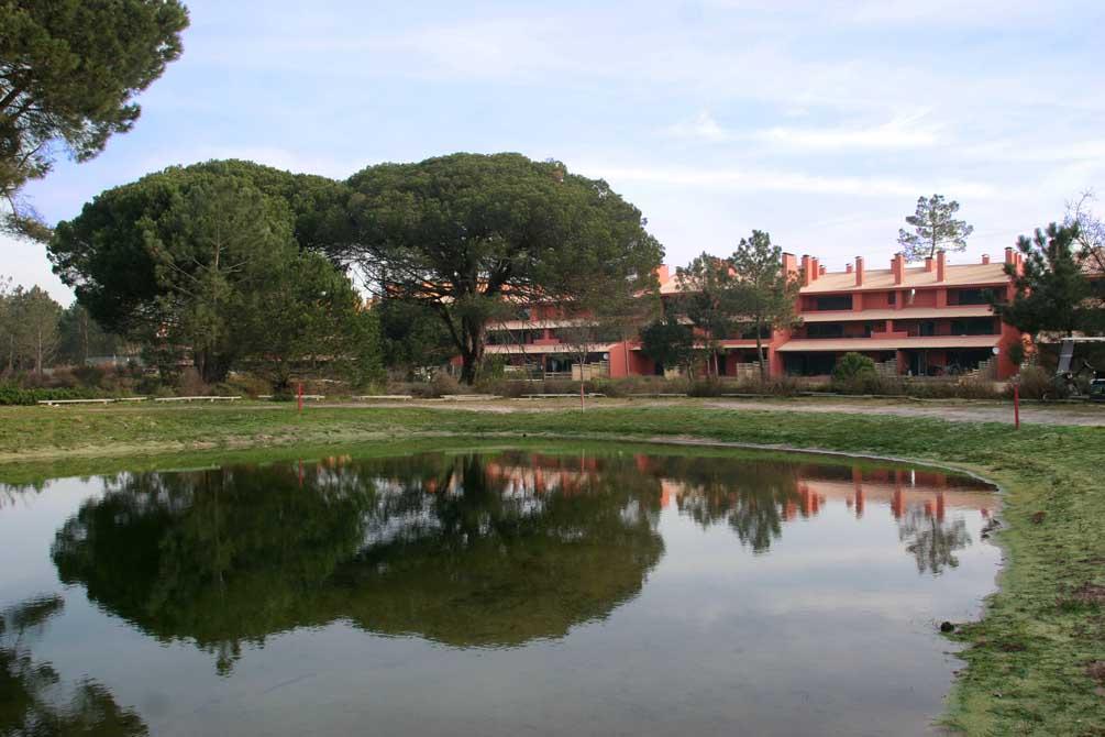 https://golftravelpeople.com/wp-content/uploads/2019/04/Aroeira-Apartments-5.jpg
