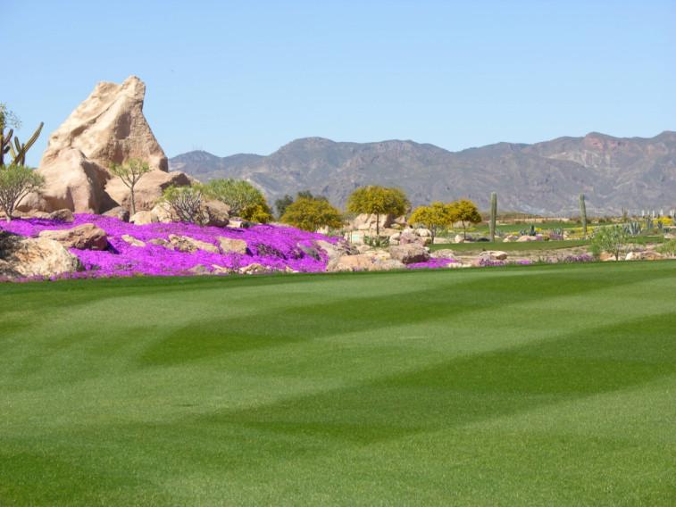 https://golftravelpeople.com/wp-content/uploads/2019/04/Desert-Springs-Golf-Club-5.jpg
