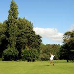 https://golftravelpeople.com/wp-content/uploads/2019/04/Lisbon-Sports-Club-7-150x150.jpg