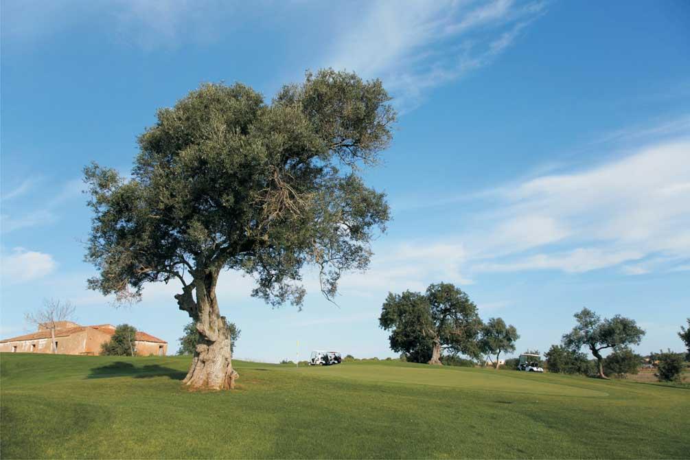 https://golftravelpeople.com/wp-content/uploads/2019/04/Pestana-Silves-Golf-Club-4.jpg