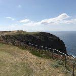 https://golftravelpeople.com/wp-content/uploads/2019/04/Porto-Santo-Golf-Club-Madeira-12-150x150.jpg