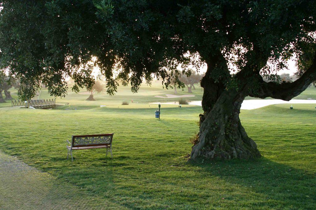 https://golftravelpeople.com/wp-content/uploads/2019/04/Quinta-da-Cima-Golf-Club-New-22-1024x683.jpg