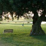 https://golftravelpeople.com/wp-content/uploads/2019/04/Quinta-da-Cima-Golf-Club-New-22-150x150.jpg