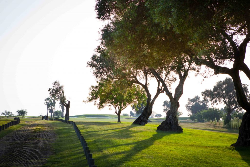 https://golftravelpeople.com/wp-content/uploads/2019/04/Quinta-da-Ria-Golf-Club-New-25-1024x683.jpg