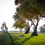 https://golftravelpeople.com/wp-content/uploads/2019/04/Quinta-da-Ria-Golf-Club-New-25-150x150.jpg