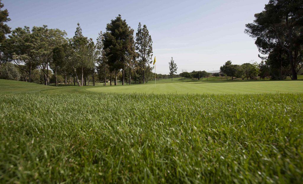 https://golftravelpeople.com/wp-content/uploads/2019/04/Real-Club-Pineda-Golf-Seville-3-1024x622.jpg