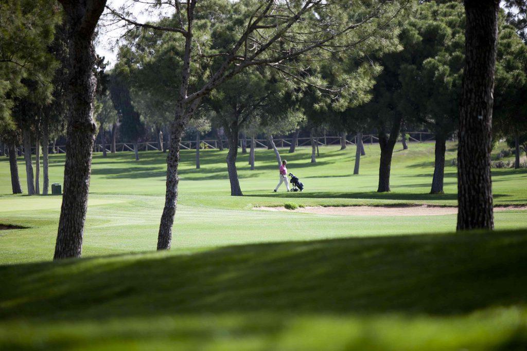 https://golftravelpeople.com/wp-content/uploads/2019/04/Real-Club-Pineda-Golf-Seville-8-1024x683.jpg