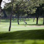 https://golftravelpeople.com/wp-content/uploads/2019/04/Real-Club-Pineda-Golf-Seville-8-150x150.jpg