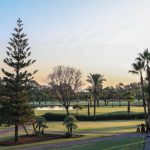 https://golftravelpeople.com/wp-content/uploads/2019/04/Real-Club-Seville-4-150x150.jpeg