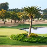https://golftravelpeople.com/wp-content/uploads/2019/04/Real-Club-Seville-Winter-Conditions-6-150x150.jpeg