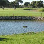 https://golftravelpeople.com/wp-content/uploads/2019/04/Robinson-Nobilis-Golf-3-150x150.jpg