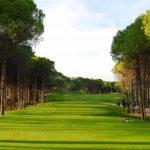 https://golftravelpeople.com/wp-content/uploads/2019/04/Sueno-Dunes-Pines-Golf-Course-2-150x150.jpg