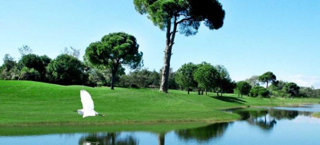 https://golftravelpeople.com/wp-content/uploads/2019/04/Tat-International-Golf-Club-4-1024x465.jpg