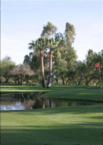 https://golftravelpeople.com/wp-content/uploads/2019/05/Real-Club-de-Golf-Guadalmina-21.jpg