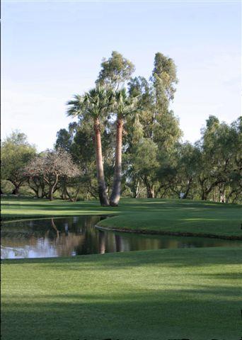 https://golftravelpeople.com/wp-content/uploads/2019/05/Real-Club-de-Golf-Guadalmina-23.jpg