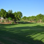 https://golftravelpeople.com/wp-content/uploads/2019/06/Altorreal-Golf-Club-Murcia-New-22-150x150.jpg