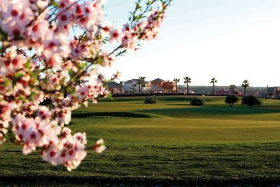 https://golftravelpeople.com/wp-content/uploads/2019/06/Hacienda-del-Alamo-Golf-Club-Murcia-Spain-8-400x267.jpg